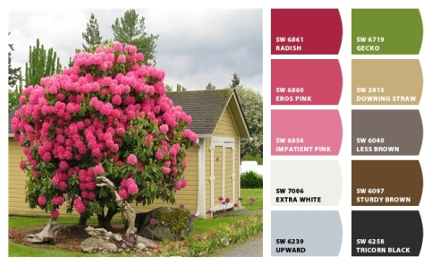 Sherwin Williams Color Chip Card derived from my Port Gamble Rhody photo